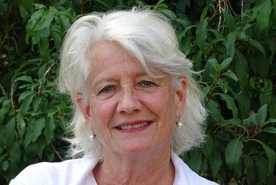 Online symposium Pauline Ottervanger